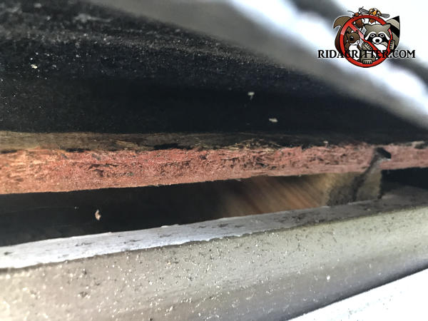 Half inch gap at the edge of the roof sheathing allowed bats into the attic of a house in Lawrenceville Georgia