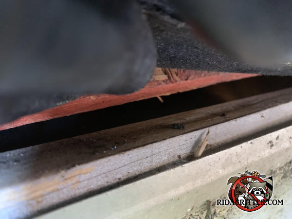 Gap of about half an inch at the edge of the roof allowed bats into the attic of a house in Rex Georgia