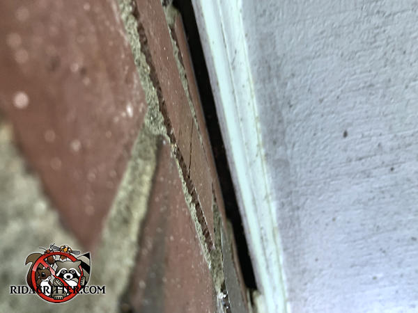 Quarter inch gap between the soffit trim and the brick wall where the caulking fell out needs to be sealed to keep bats out of the attic of a house in Atlanta Georgia