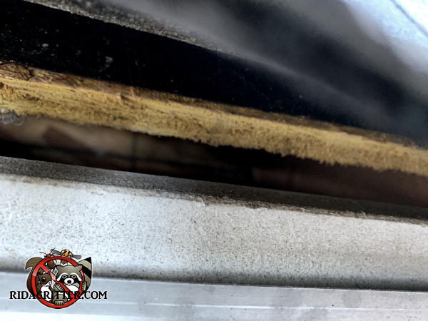 Half inch gap between the roof sheathing and the stained fascia board of a house in Duluth Georgia needs to be sealed to keep bats out of the attic
