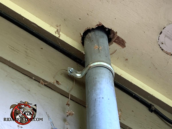 Half inch gap around a vertical pipe where it passes through the soffit panel needs to be sealed to keep bats out of a house in Acworth Georgia