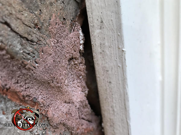 Quarter inch gap between the bricks and the frieze board allowed bats into a brick house in Peachtree City Georgia