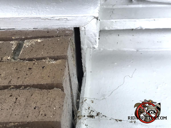 Three eighths inch gap between the brick chimney and the molding allowed bats to get into a house in Roswell Georgia