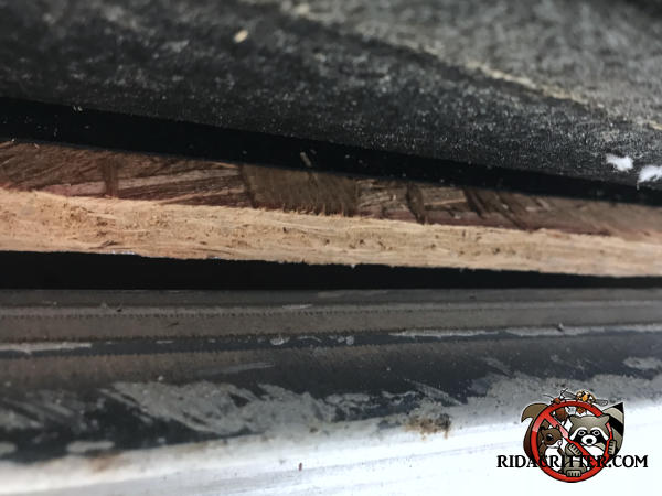 Tapered roof edge gap about a quarter inch at the wide end allowed bats into the attic of a house in Soddy Daisy Tennessee