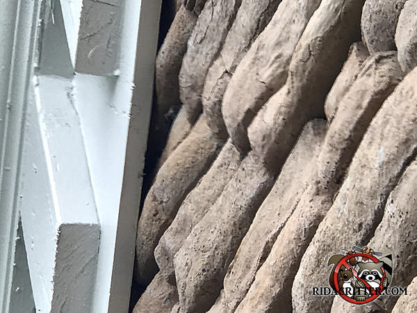 Gaps between the roof trim and the irregular surface of the stone wall will make bat proofing a Buford Georgia home more challenging.