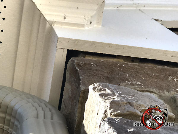 Gap between the frieze board and the corner of the stone wall of the house needs to be sealed to keep bats out of the attic of a house in Cumming Georgia