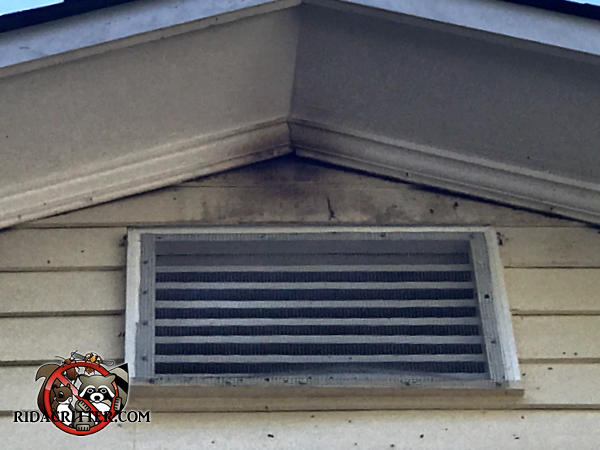 Bat smudge marks on the exterior gable vent and around a gap behind the roof trim