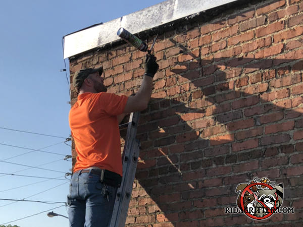 Man on a ladder using a pressurized sealant to keep bats out of a warehouse in Atlanta