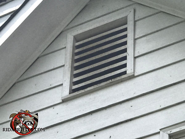Dark stains on the slats of a gable vent on a house in Dallas Georgia from bats going in and out