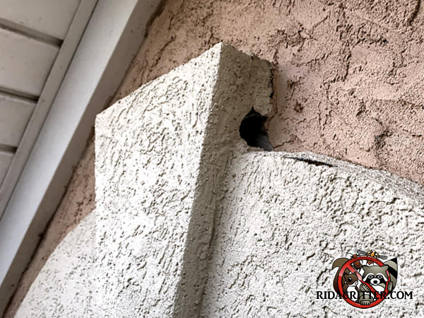 Stucco fell out of the exterior wall of the house very high up and created a hole that honey bees used to get in