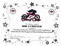 Certificate of Appreciation from Curves and Chrome 2013