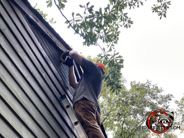 Man on a ladder repairing damage that carpenter bees did to the wooden trim at the peak of a house in Dunwoody Georgia