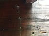 Carpenter bee holes with wax stains in the wooden structural members of a house