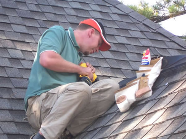 Jeff Animal Proofing A Roof In Atlanta Georgia