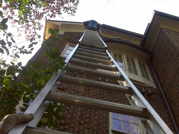 Dean up on a ladder on a flying squirrel-removal job