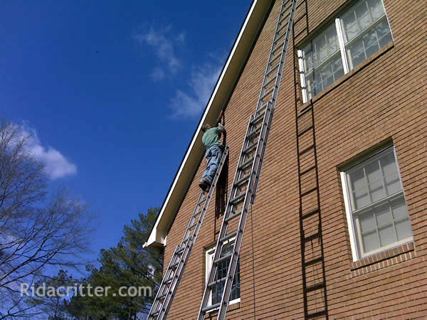 Men on ladders sealing bats out of an apartment building in Atlanta, Georgia