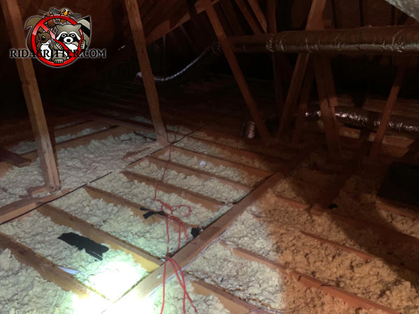 Insulation in the attic of a house in Lilburn Georgia has been contaminated and flattened out by animals and needs replacement