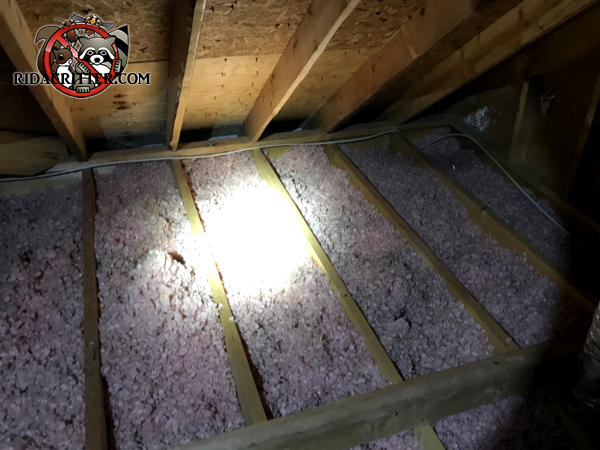 Flattened out and dirty insulation between the floor joists of the entire attic of a house in Sylvester Georgia