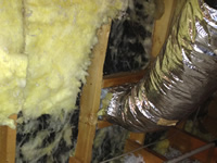 Missing insulation where raccoons pulled it away from the walls
