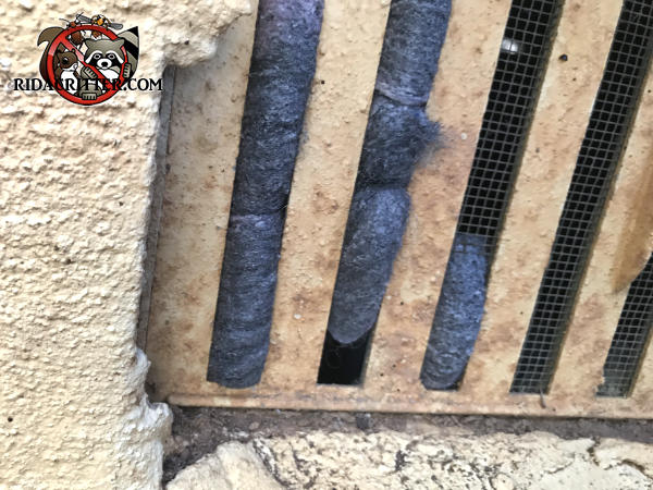 Steel wool stuffed into a foundation vent to keep the mice out of a house in Conyers Georgia was pushed out of the way by the mice