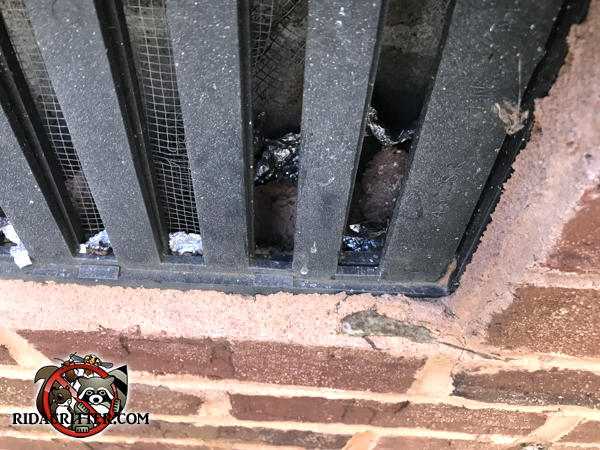 The homeowner tried to seal mice out of a foundation vent in Dunwoody Georgia using aluminum foil. Only a few little pieces remain.