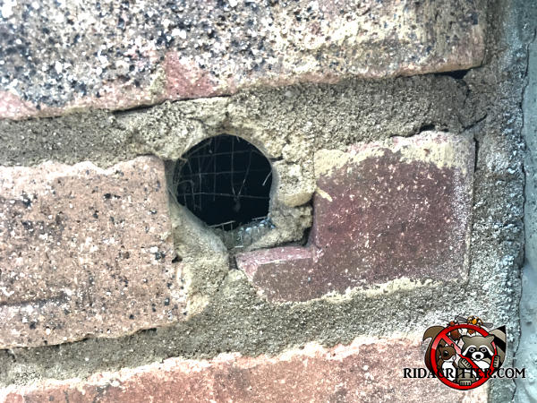 Mice chewed through some kind of very thin wire mesh in a hole in the mortar to get into a brick house in Alpharetta Georgia.