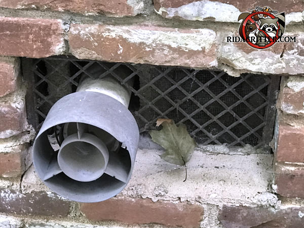 A pipe passed through the foundation vent left openings through which mice got into a house in Atlanta