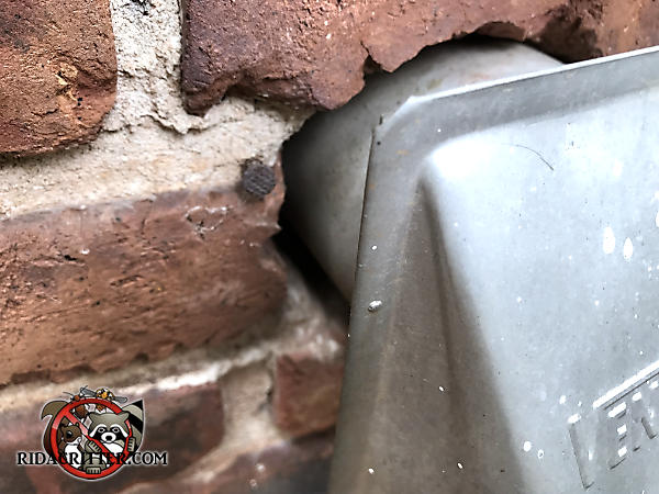 The dryer vent is sticking out about an inch from the brick wall of a house in Atlanta and mice got in through the gap