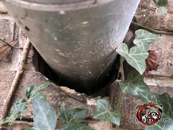 Three quarter inch gap under a pipe passed through the brick wall of a house in Berkeley Lake Georgia allowed mice to get into the house