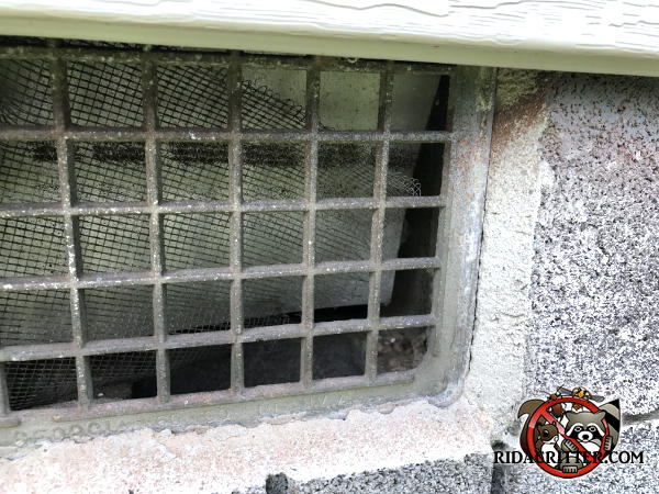 The screen behind the foundation vent is corroded and fell away from the vent which allowed mice into the house