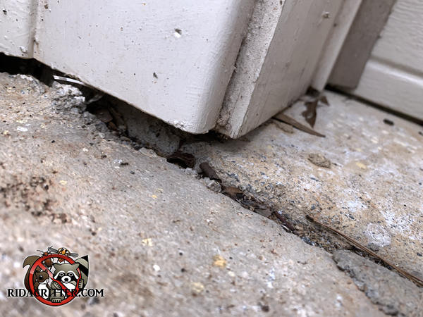 Gap between the garage door trim and the pavement allowed mice into a house in Cartersville Georgia