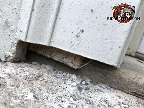 Gap between the sheathing and the siding of a house in Cartersville Georgia allowed mice into the house