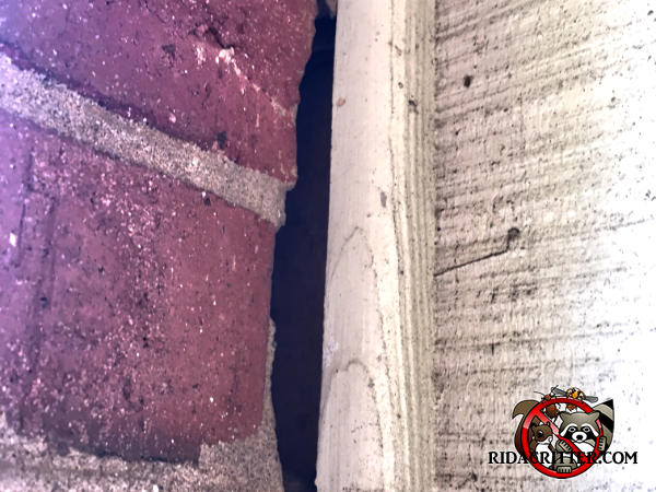 Gap between the bricks and the wooden trim caused by the mortar not being there allowed mice into a house in Chattanooga