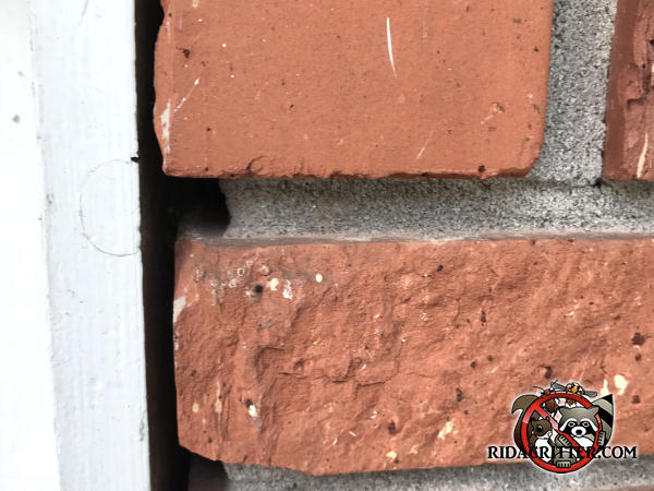Gaps between the bricks and a piece of vertical wooden trim allowed mice to get into a brick house in Chattanooga