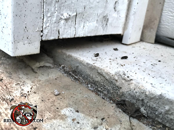 Gap of about half an inch between the wooden trim and the concrete pavement allowed mice into a Chattanooga Tennessee home