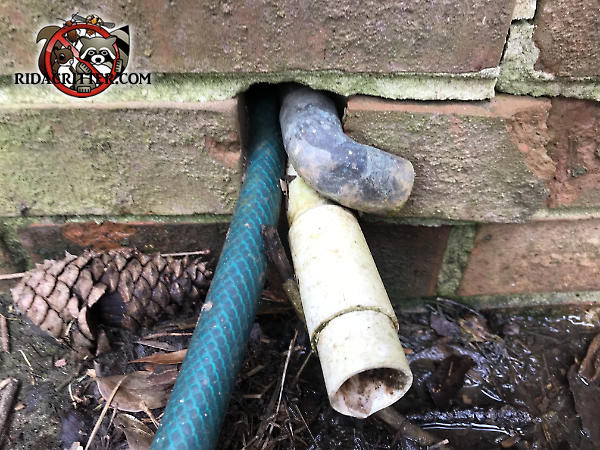 Mice got into a house in Conyers Georgia through the space around two pipes and a garden hose going through a hole in the brick wall