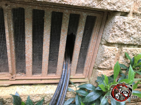 Television cables were passed through the foundation vent screen which allowed mice into a house in Doraville Georgia
