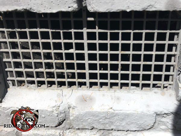 Most of the screening has fallen off a metal foundation vent allowing mice to get in through the lattice
