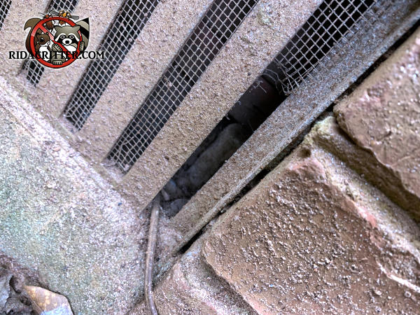 The screen behind the foundation vent was punctured to pass a wire through and mice also got into the house