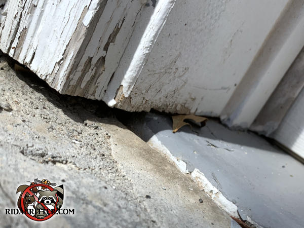 Gap of about a quarter inch between the wooden trim and the pavement allowed mice into a house in Milton Georgia