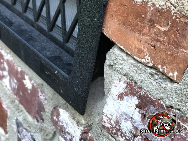 Gap in the mortar around a foundation vent allowed mice to get into a house in Monroe Georgia