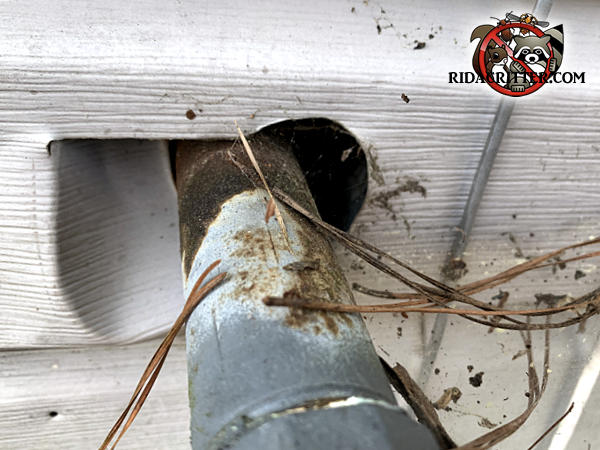 There is a gap around a gas pipe where it passes through the siding into a house in Lithonia