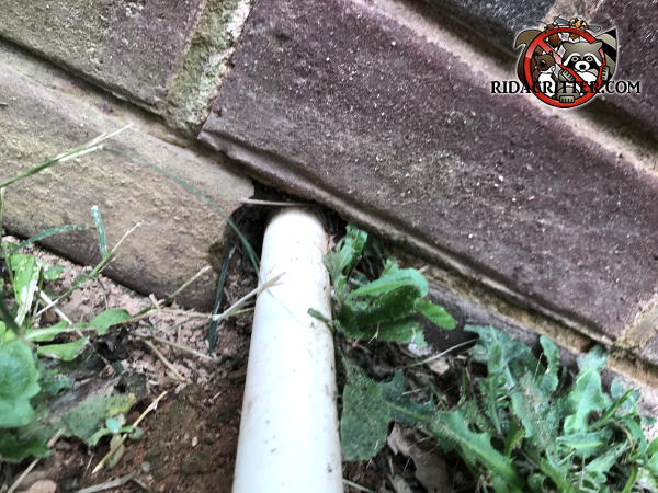 Gap around a pipe passed through a brick at ground level allowed mice into a house in Social Circle Georgia