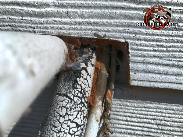Mice gnawed through the insulating foam used to seal the opening where pipes and wires pass through the wall of a house in Soddy Daisy Tennessee