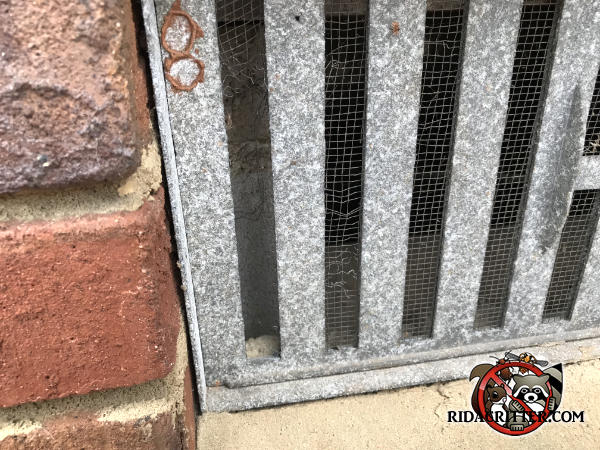 Mice chewed through the screen behind a foundation vent to get into the crawl space of a house in Stone Mountain Georgia