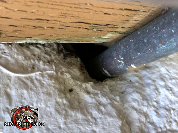 Mice got into a Stone Mountain Georgia home through a gap around a pipe passed through the wall under the deck