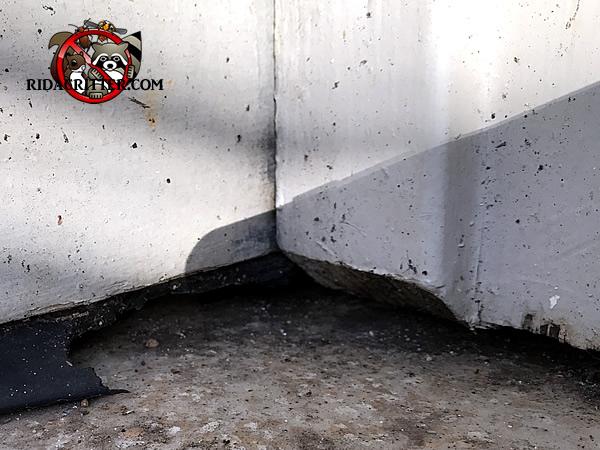 Mouse control alpharetta roswell columbus north georgia for Alpharetta garage door