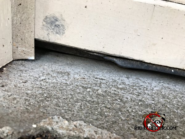 Mouse Extermination And Control Atlanta Marietta