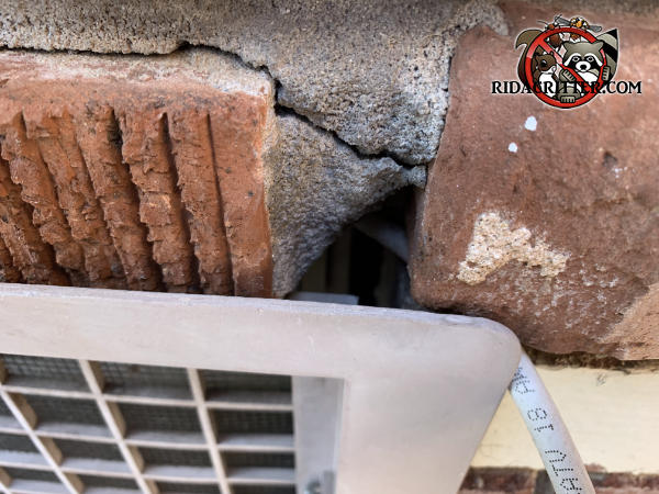 A piece of mortar fell out from between the bricks at the top of a foundation vent and allowed mice to get into a house in Atlanta