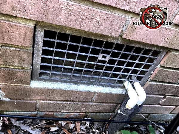 The screen is missing from behind the foundation vent of a house in Atlanta and mice got in through the openings